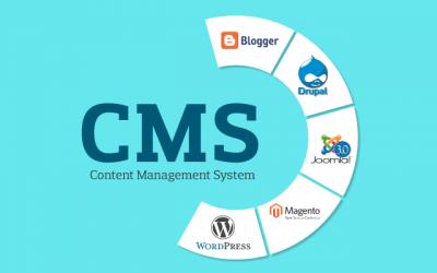 Track 1: Content Management System (Website Design) (Option 1)